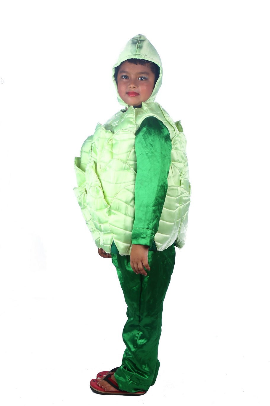 Cabbage Vegetable Costume