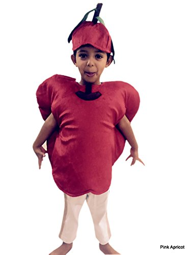 Beetroot Vegetable  costume