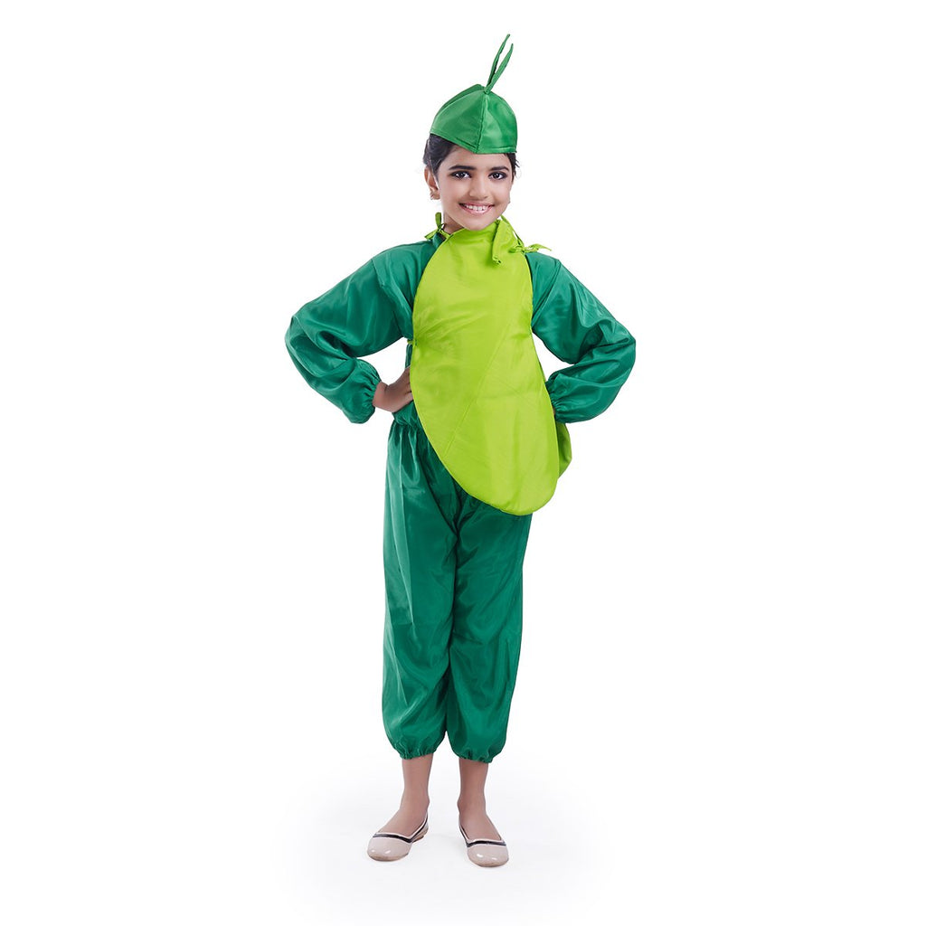 Bottlegourd Vegetable  costume
