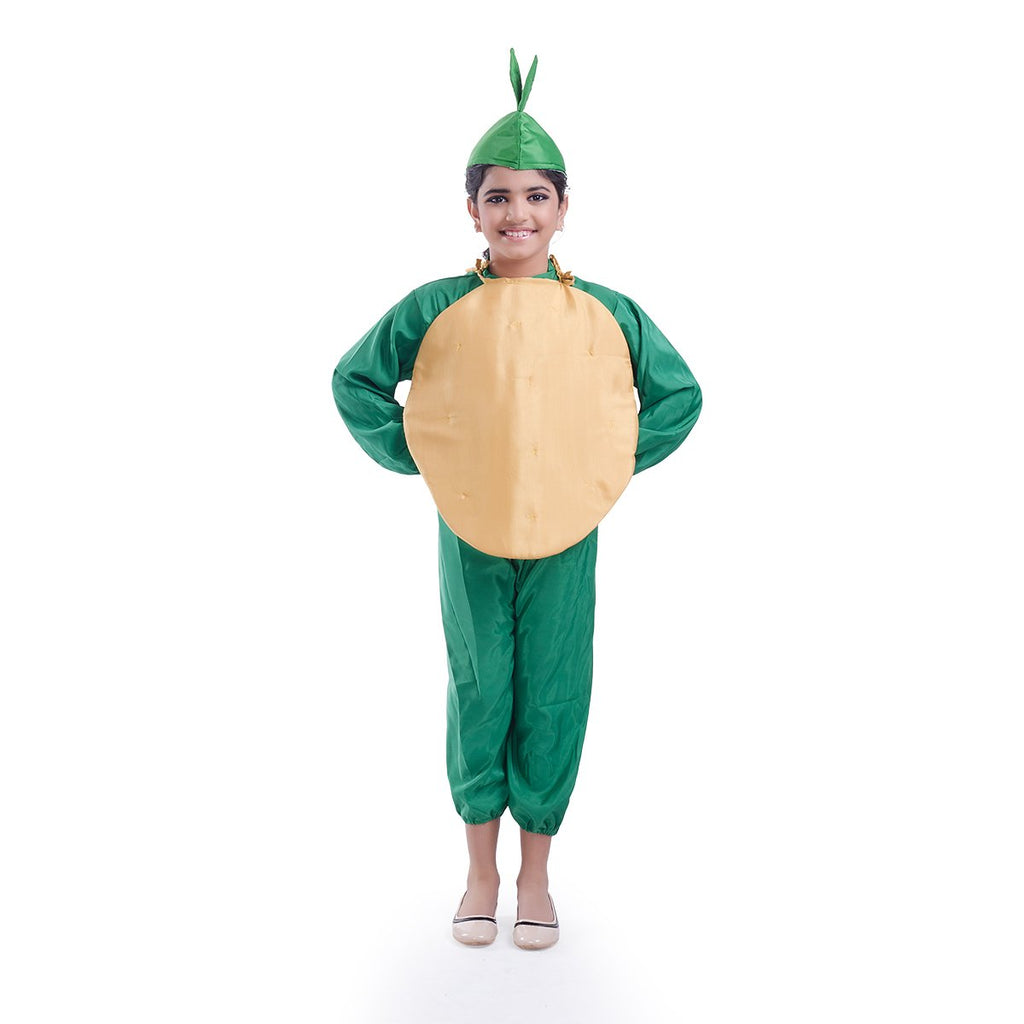 Coconut Fruit  costume