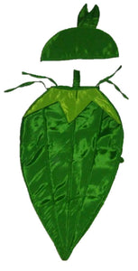 Ladyfinger Vegetable  costume