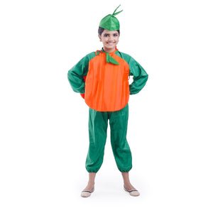 Carrot Vegetable  costume
