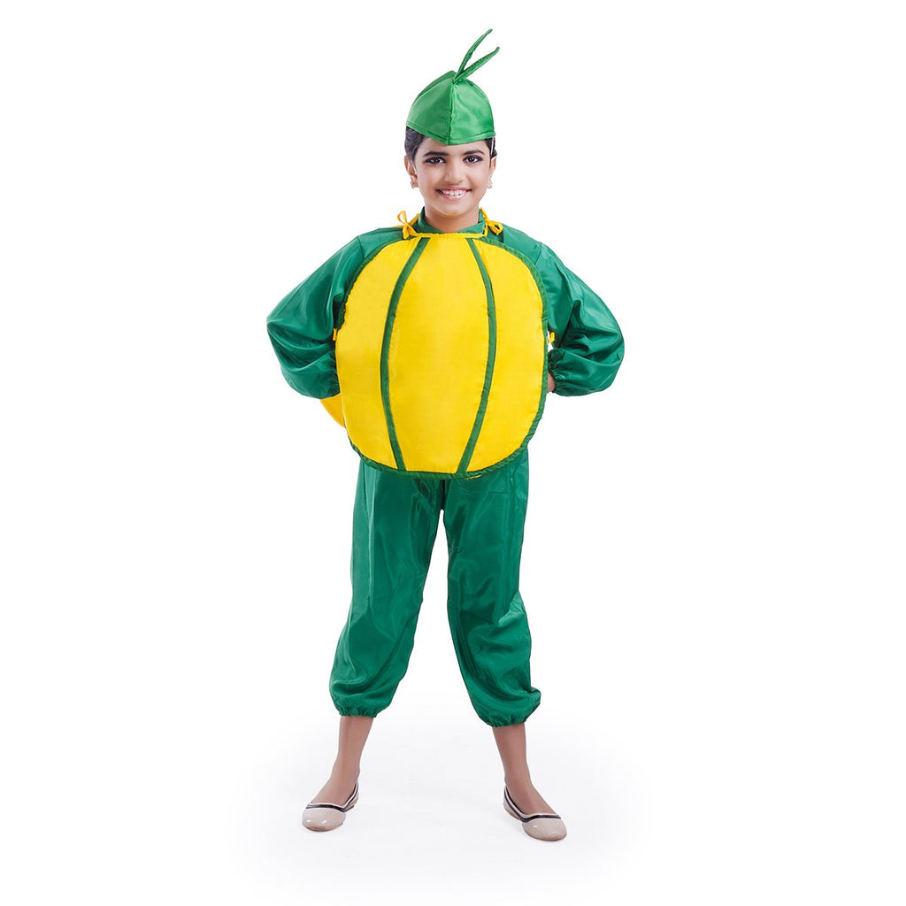 SweetLime Mosambi Fruit  costume