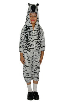 Animal Zebra costume