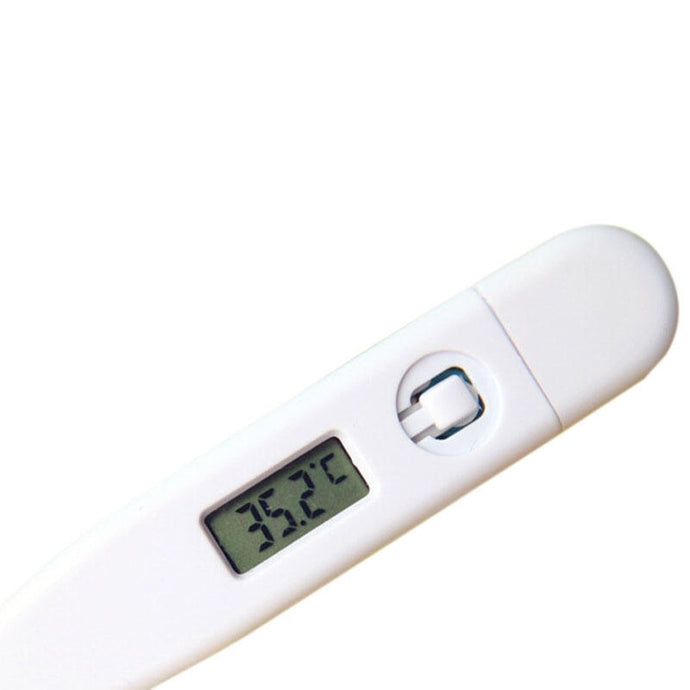 Digital LCD Thermometer - FlexPro