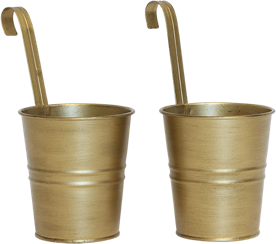 2 Gold metal cups