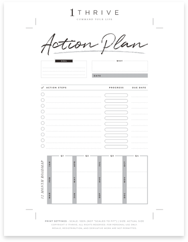 Twelve Month Action Plan