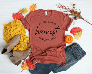 Harvest Graphic