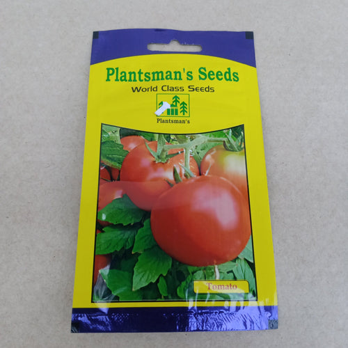 Seed Tomato