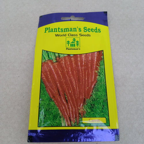 Seed Carrot Red Long