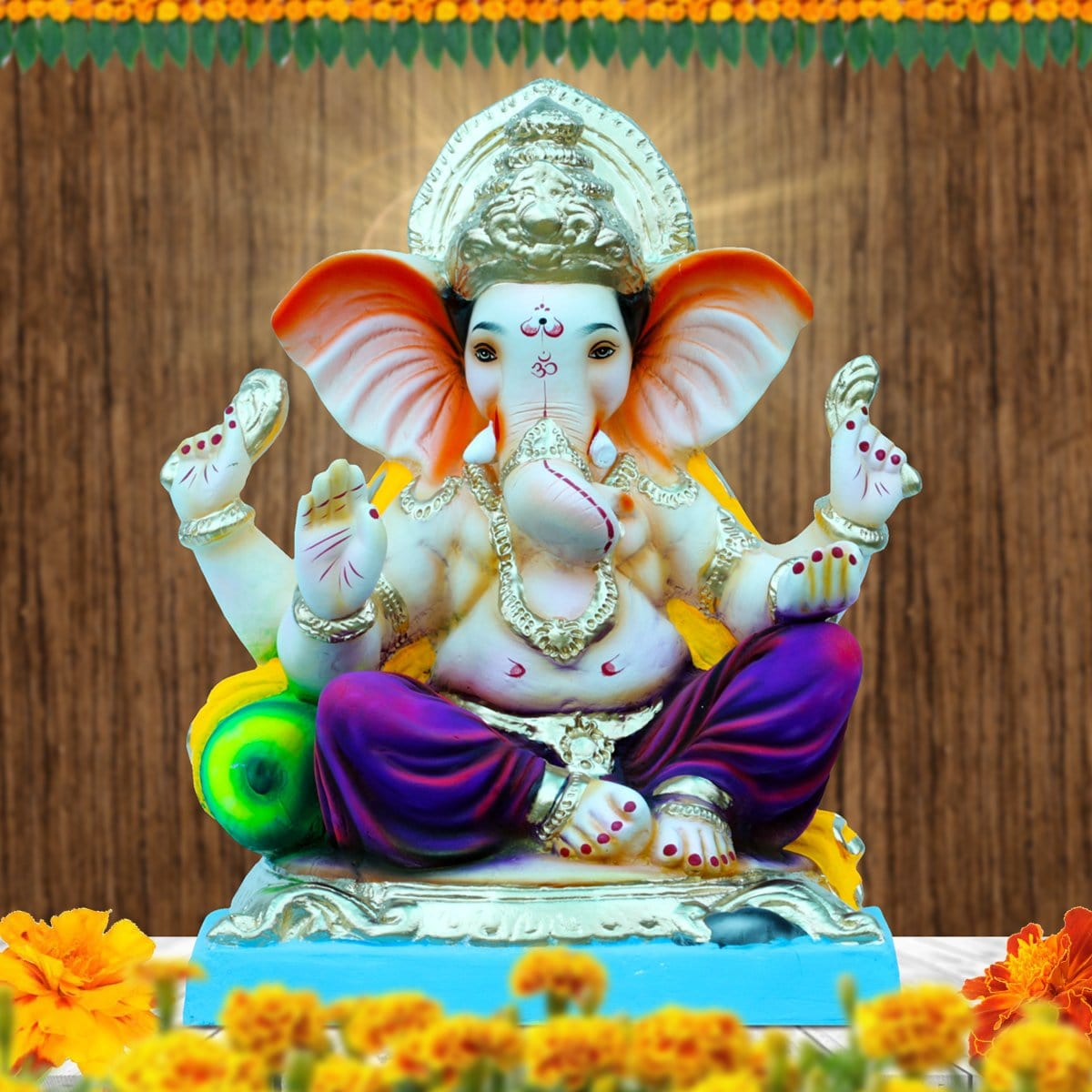 Eco - Friendly Ganpati