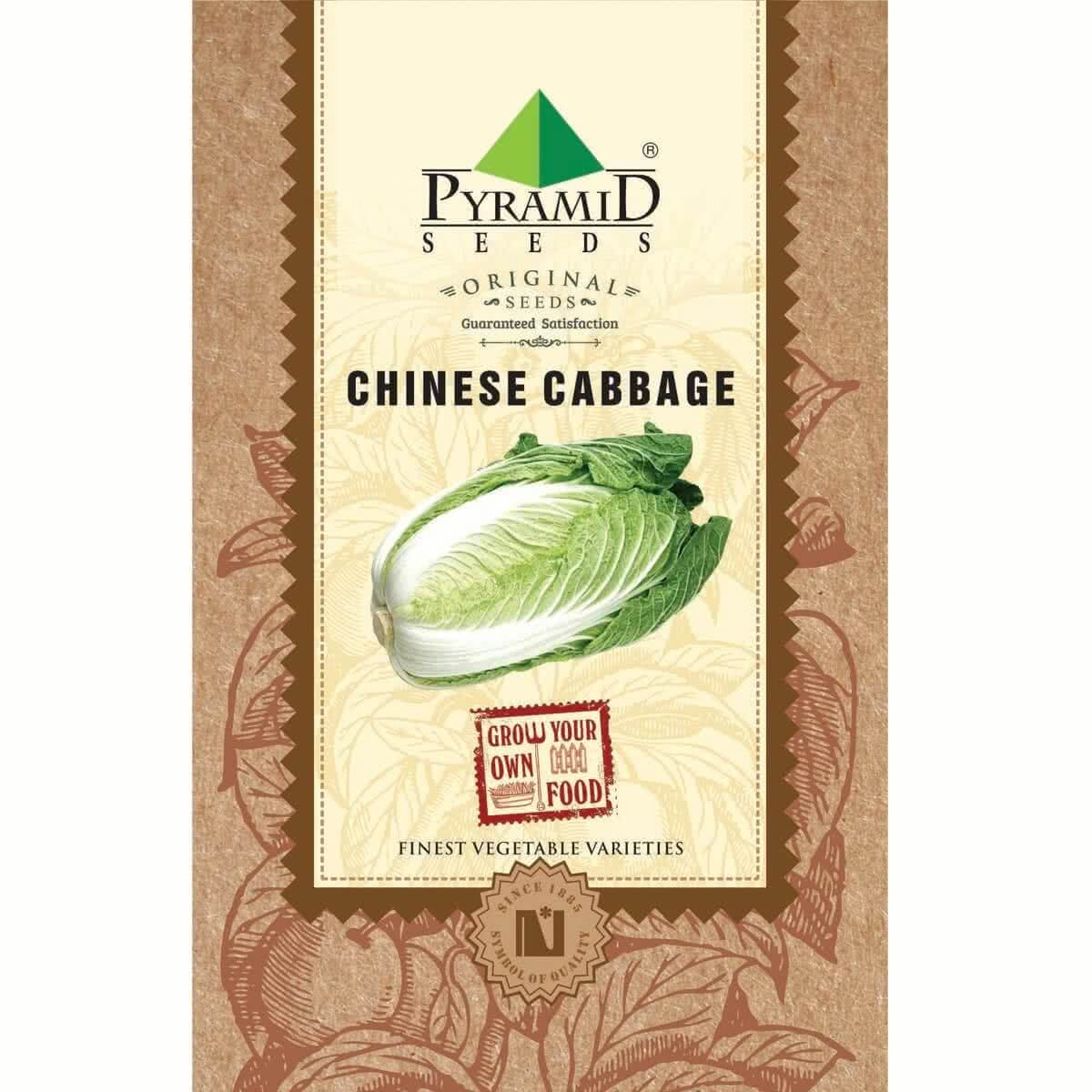 Seed Cabbage Chinese