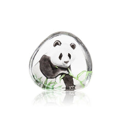 Mats Jonasson - Panda Painted