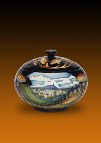 moorcroft-Bredon Hill 147/5 Lidded Box (2016)