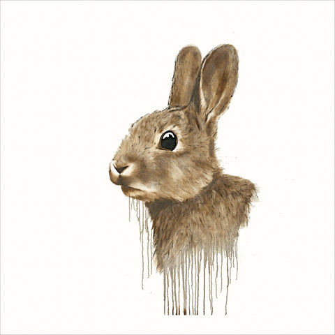 David Rees Cotton Tail (2018)