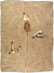 JACKIE MORRIS - Goldfinch (2019) Premium Edition
