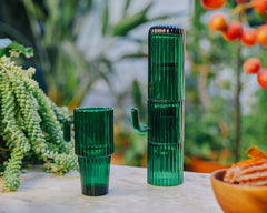 DOIY DESIGN - Saguaro Long Drink Glasses