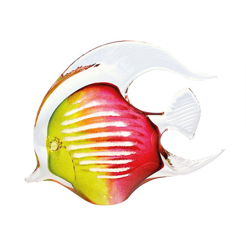 svaja-Agnes Angel Fish Lime/Cherry