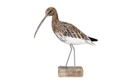 Archipelago - Curlew Walking