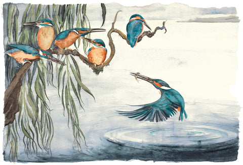 Jackie Morris illustration Kingfishers (2018) for Robert Macfarlane's The Lost Words