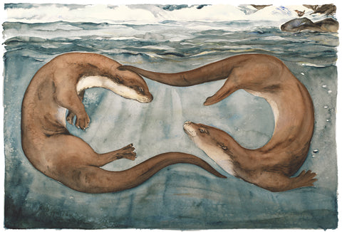 Jackie Morris illustration Otters (2018) for Robert Macfarlane's The Lost Words