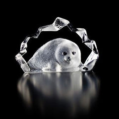MALERAS - Baby Seal Miniature