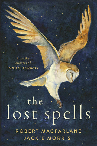 Robert Macfarlane and Jackie Morris, The Lost Spells, Cover