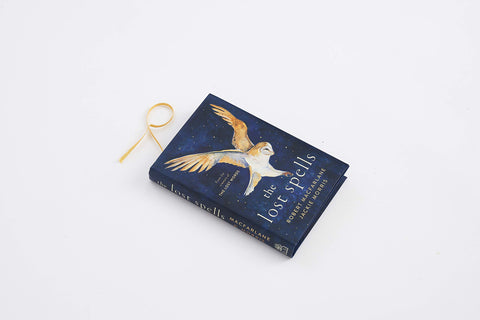 Robert Macfarlane and Jackie Morris, The Lost Spells, Front