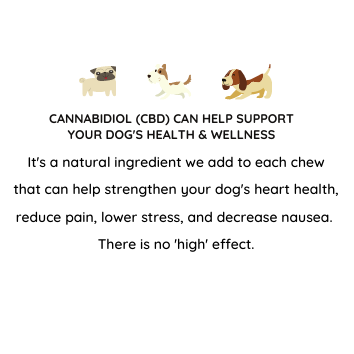 help support your DOG'S HEALTH & Wellness.png