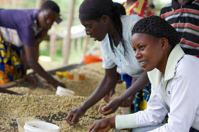 Copper Moon Coffee Unveils Rwandan Coffee in Support of Women Coffee Farmers