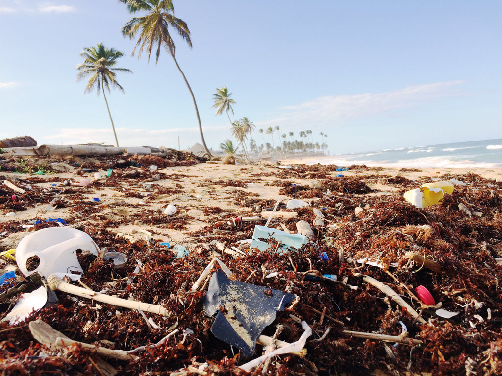 Beach pollution punta cana by Dustan Woodhouse