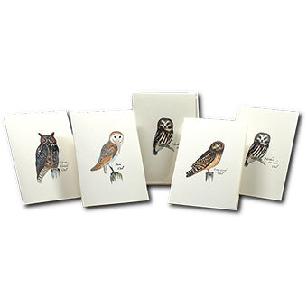 Nature Owl Note Cards