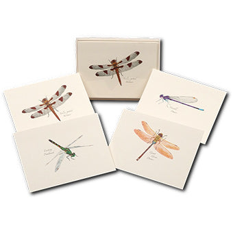 Nature Dragonfly Note Cards