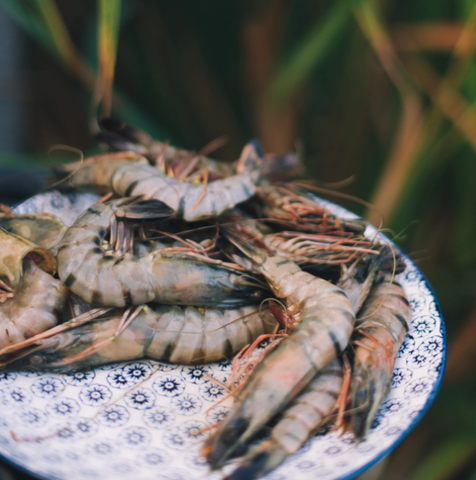 Great British Prawns