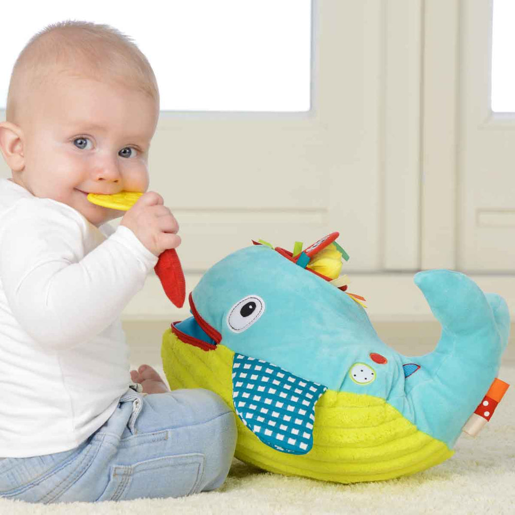 Dolce Play and Learn Whale