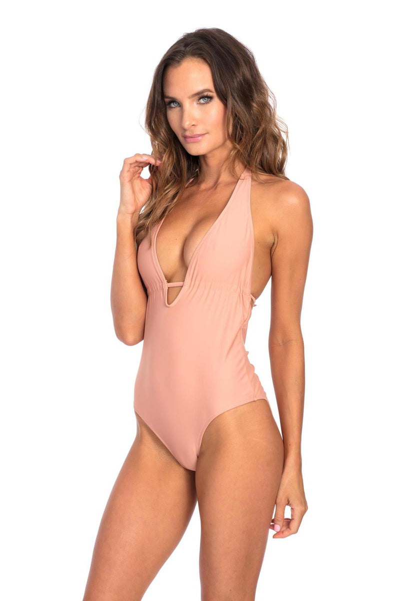 Plunge ONE PIECE - Muted Clay Vivian One Piece