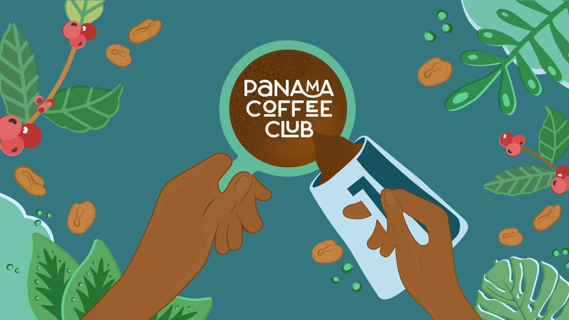 Panama Coffee Club