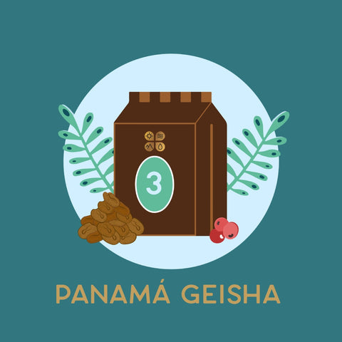 Geisha 3-month subscription (Prepaid)