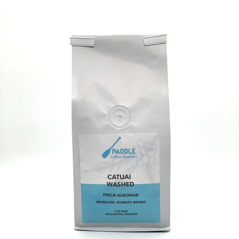 Catuai Lavado (Auromar) - Paddle Coffee Roasters