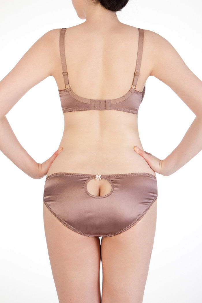 Luxury mink silk classic briefs and bra