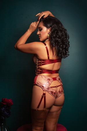 Luxury red and gold boudoir lingerie with retro style garter belt with 8 straps