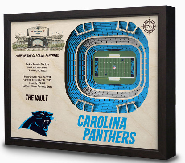 NFL Carolina Panthers Football 3D Stadium View Wall Art The Vault