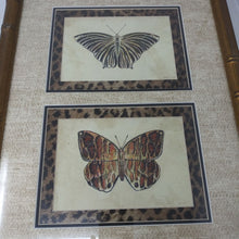 Load image into Gallery viewer, Double Matted Butterfly Picture