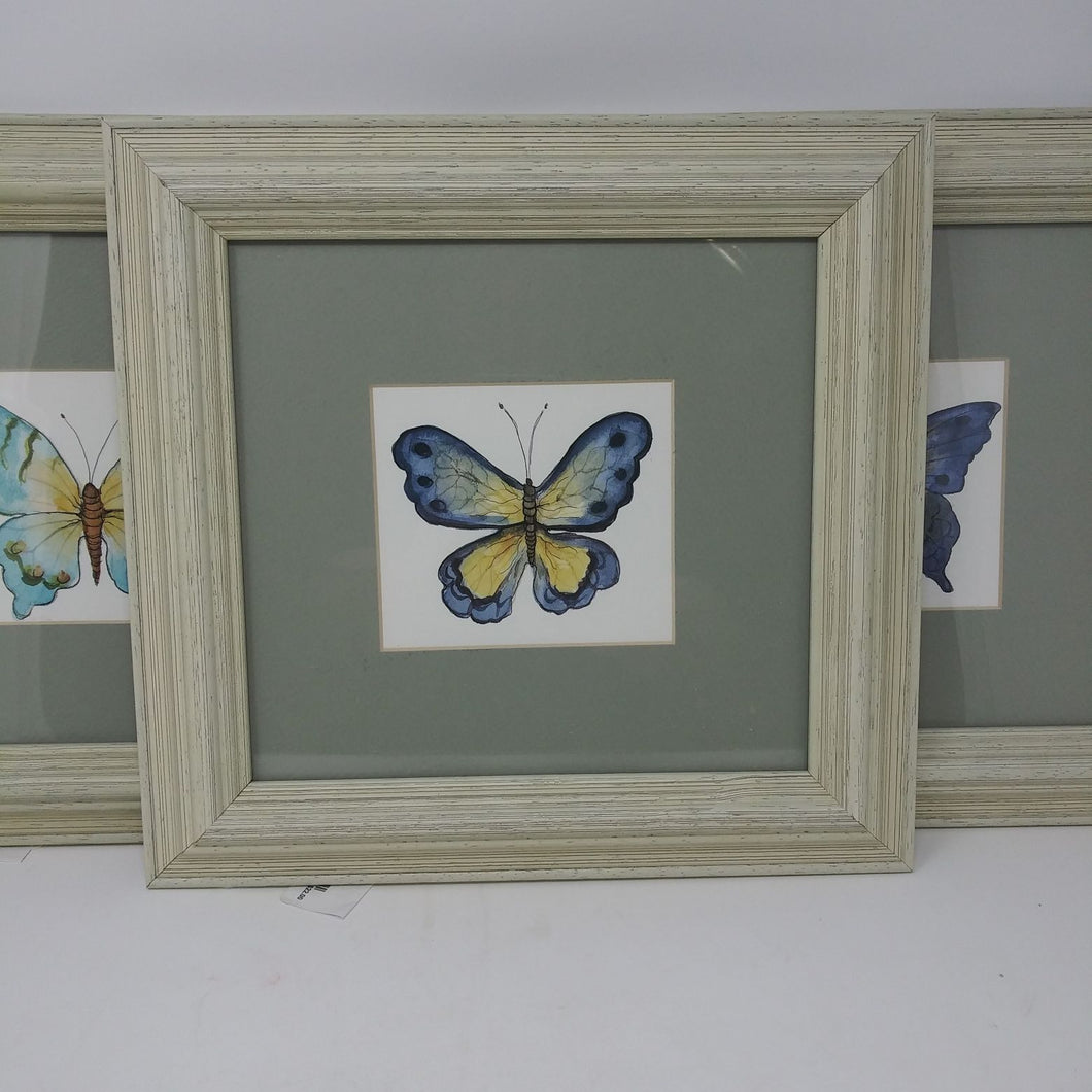Matted Butterfly Picture