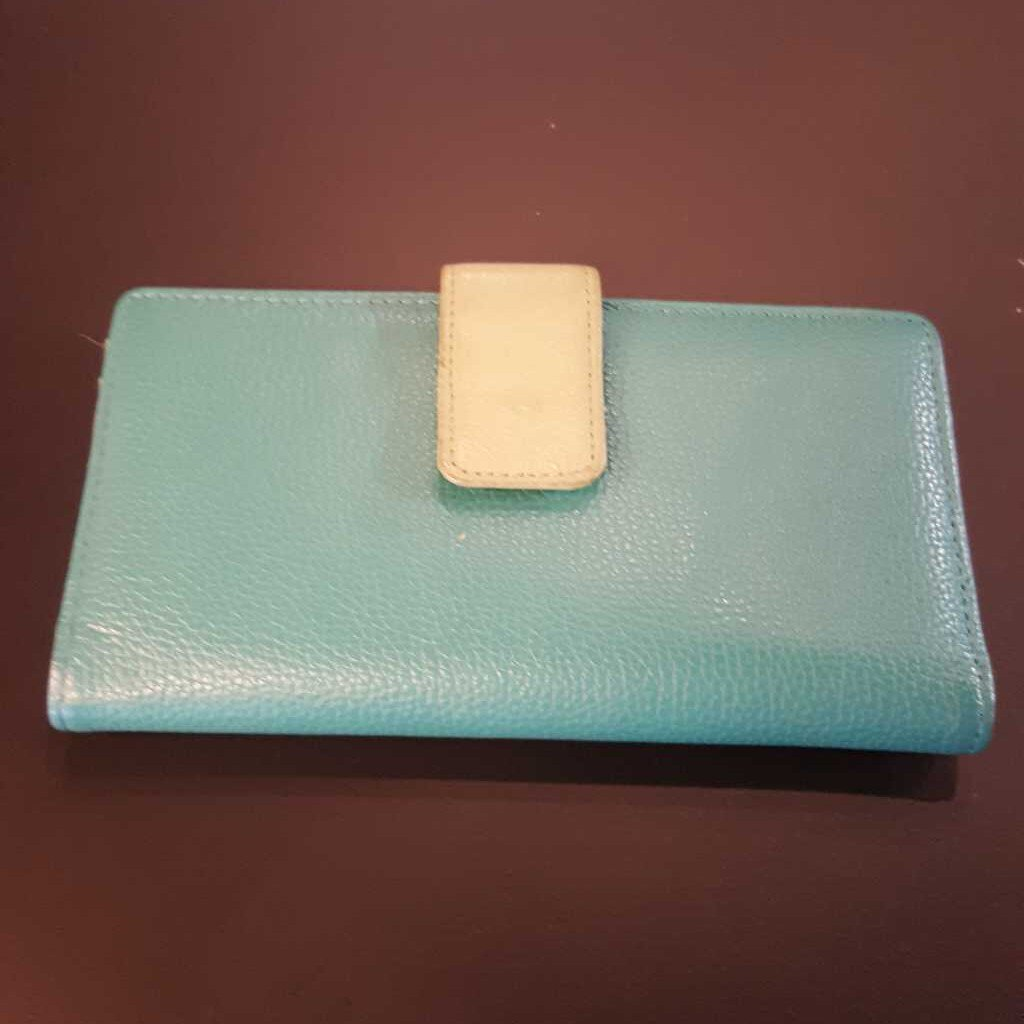 Turquoise & Lime Green Clutch Wallet