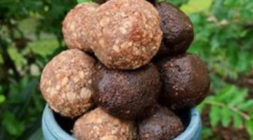 Elderberry Power Balls - Two Ways!