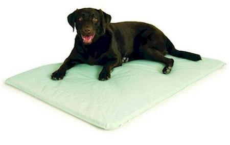 Cool Bed III - Small/Original Gray - DOGSWAGI