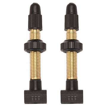Tubeless Valves 48mm Removable Core 2pcs