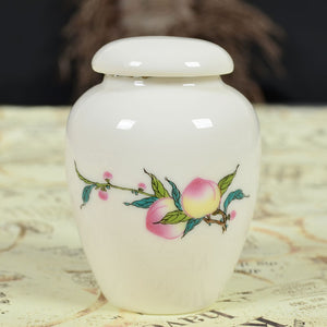 Ceramic tea canister cosmetics small packaging jar sealed storage porcelain bottle - Smoulder Products