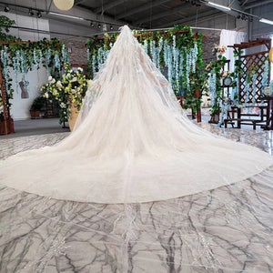 HTL805 ball gown wedding dress for women long sleeves o-neck tulle bridal dresses with feathers veil vestido novia manga larga - Smoulder Products